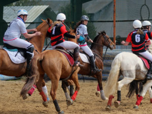 competition-equestre-horse-ball