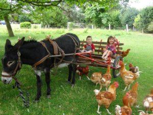 devenez-le-petit-fermier-de-la-ferme-au-fil-des-saisons
