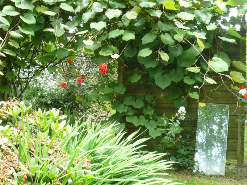 le-jardin-des-hasards