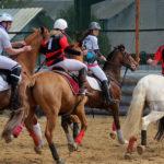 association-des-cavaliers-de-la-durdent